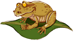 Tom the Toad